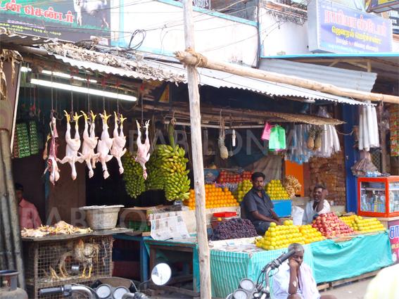 Mi Primera Vez En La Gran Ola – Sensaciones En India