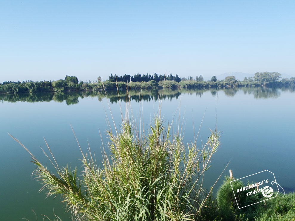 El Ebro Cerca Del Delta
