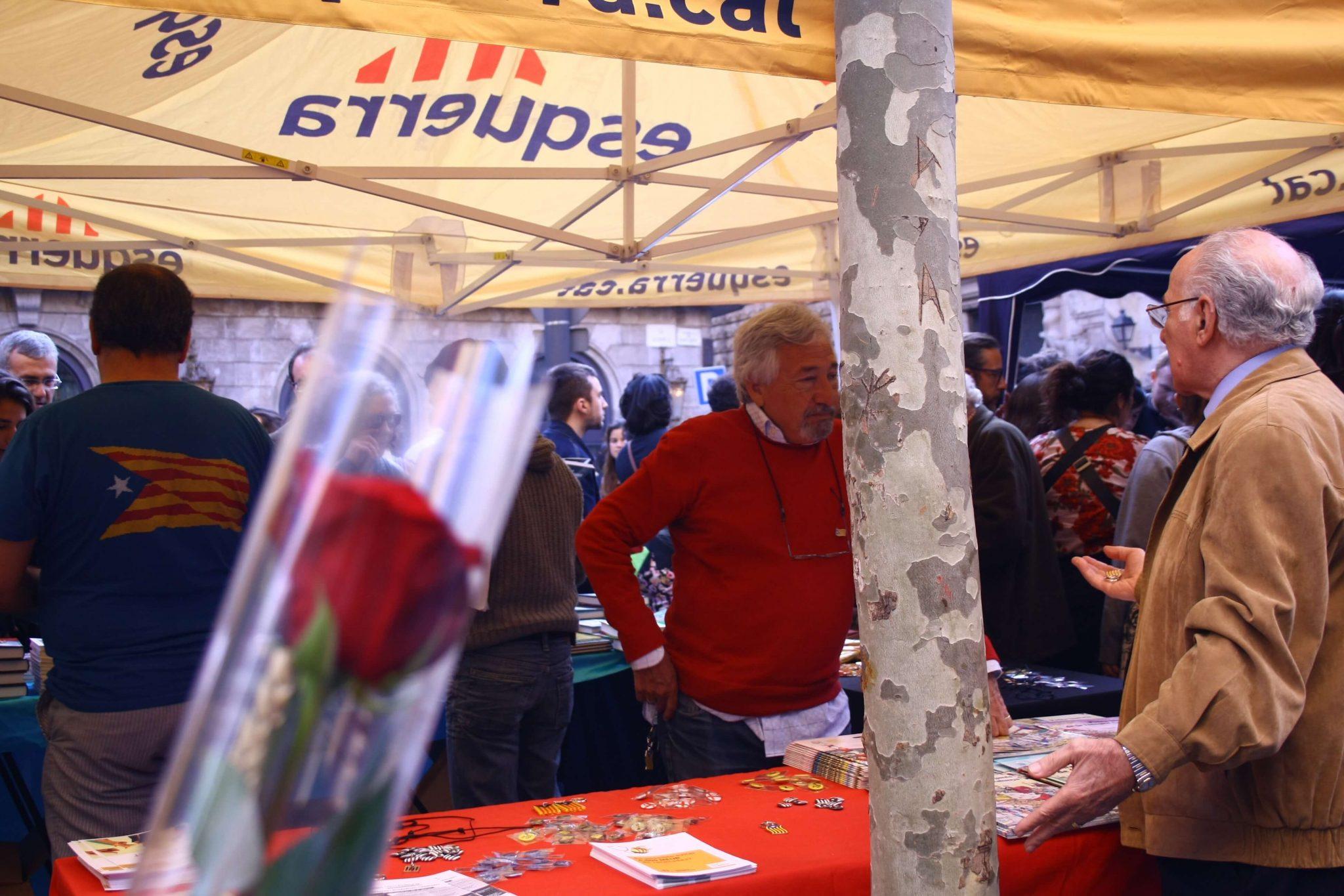 Rosas Insólitas Y Curiosidades En El Día De Sant Jordi
